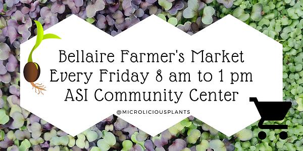 bellaire farm market.png