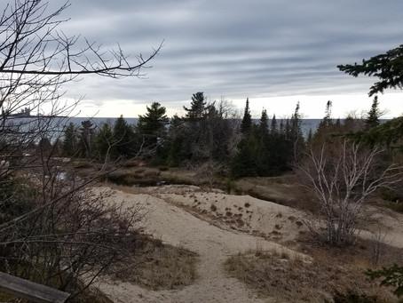 Foraging Basics & Exploring in Michigan in the Spring
