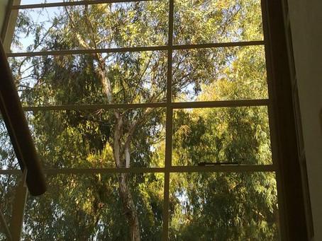 רגע לפני שאתם מתקינים חלונות בבית...