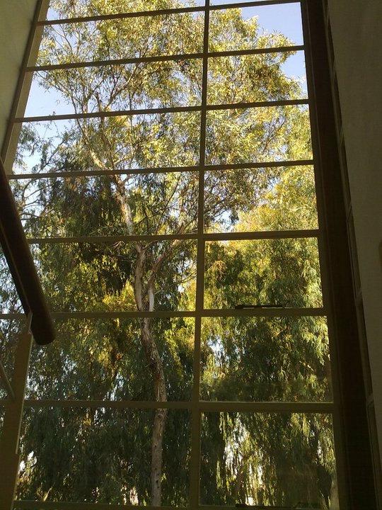 ניקוי חלונות בגובה אוסמוזה הפוכה