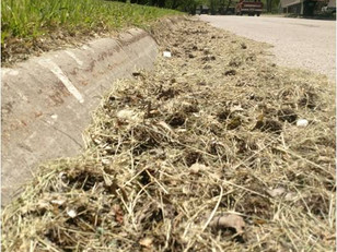GRASS CLIPPINGS AND STORM DRAINS DON'T MIX