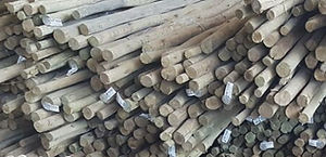 Outpost Treated Timber Wooden Laths