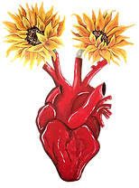 heart of phoebe logo