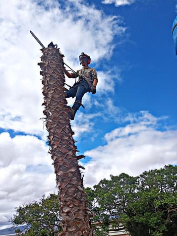 Andre Climbing 1