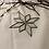 Thumbnail: Etoile 8 branches