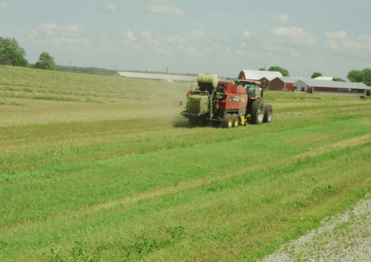 Farm Machine 2.mov