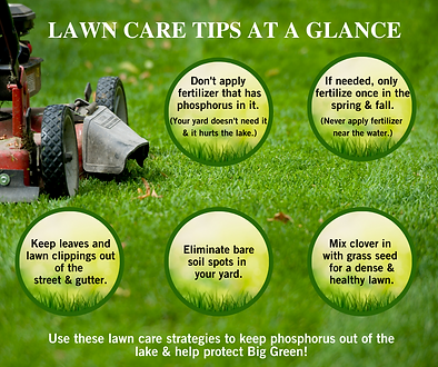 LAWN CARE TIPS AT A GLANCE.png