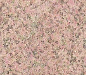 41-Salisbury-Pink.jpg