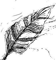 feather 2.jpg