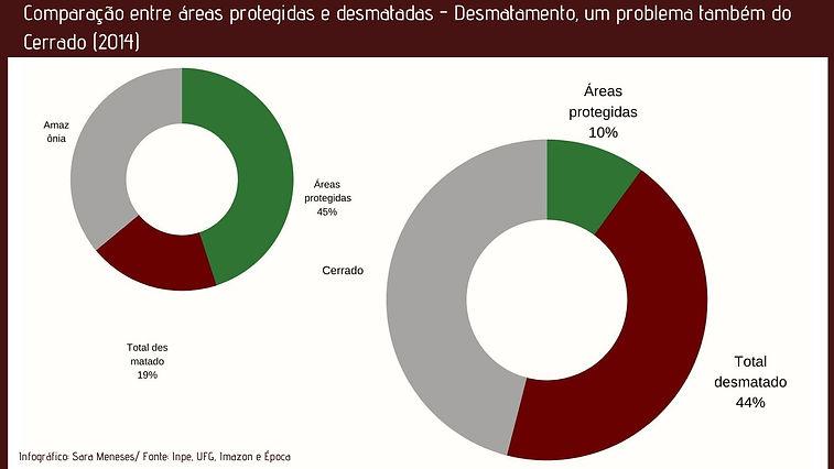 Comparação_entre_áreas_protegidas_e_desm