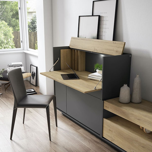 muebles-torga-salon-composicion-46.jpg