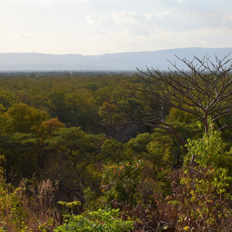 The Lower Luangwa Valley and Bulonga Hil