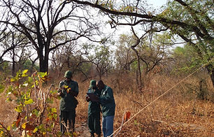 Scouts recoding an observation during 2017 late dry season transects