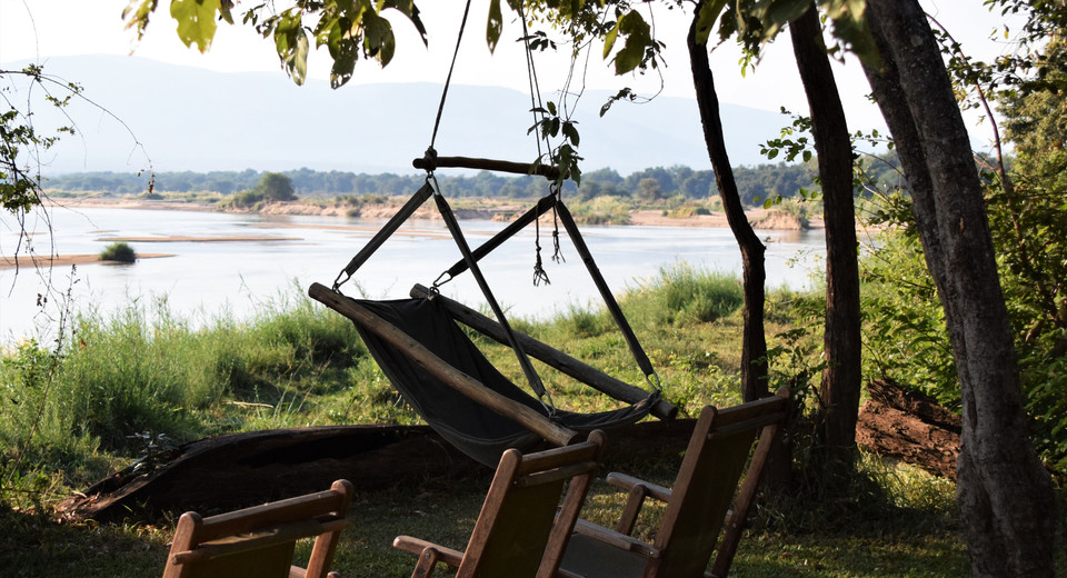 Relax and watch the river from the comfy hammock-chair under a Potato Bush Tree