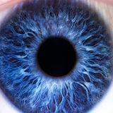 CD Impact Iris.jpg