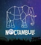 Noctambule.jpg
