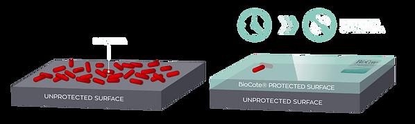 Biocote protection l'habitacle