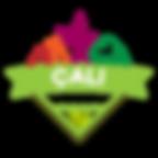 Logo-renkli-tekli-png-1.png