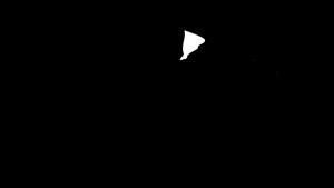 avra_bh_logo.png