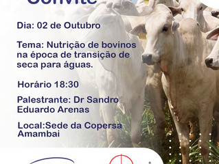 Nutrição de bovinos na época de transição de seca para águas.
