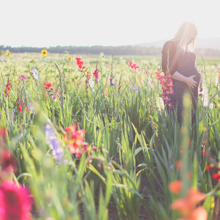Sunflowers and Baby Bumps