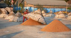 Rice factory