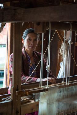 Lotus loom weaver, Inle