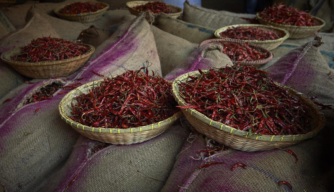 Chili peppers, Dhaka
