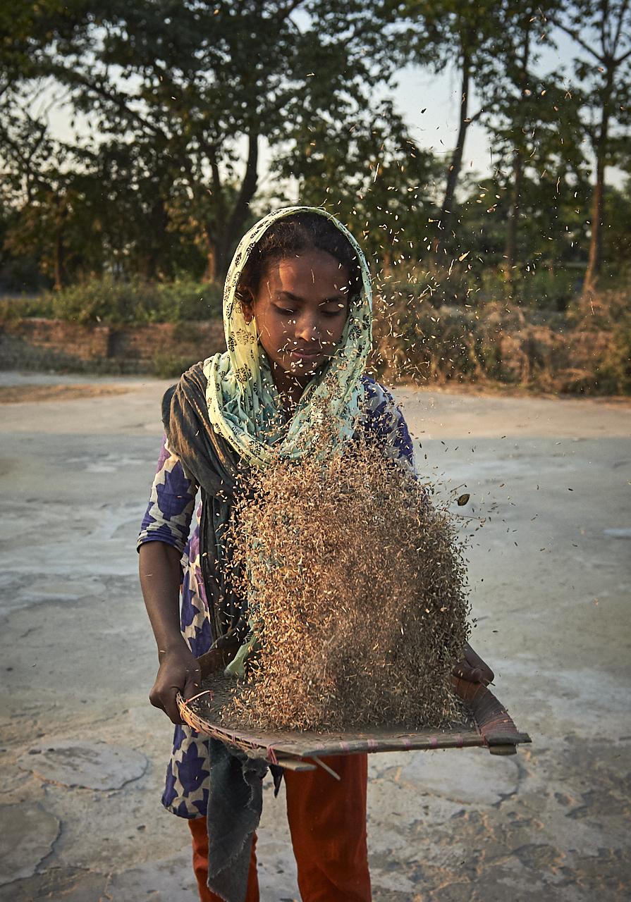 2019_Jan_01_Bangladesh_7911