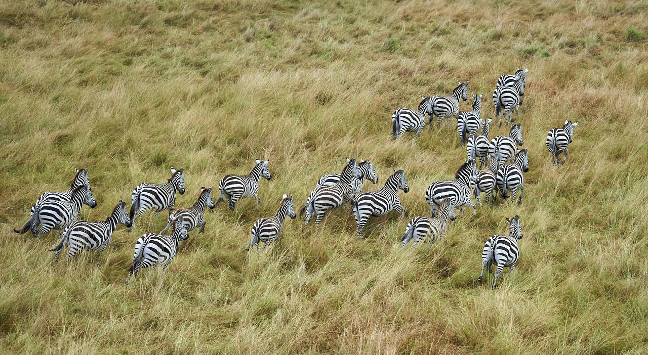 Masai Mara Park