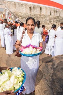 Pilgrim, Anuradhapura