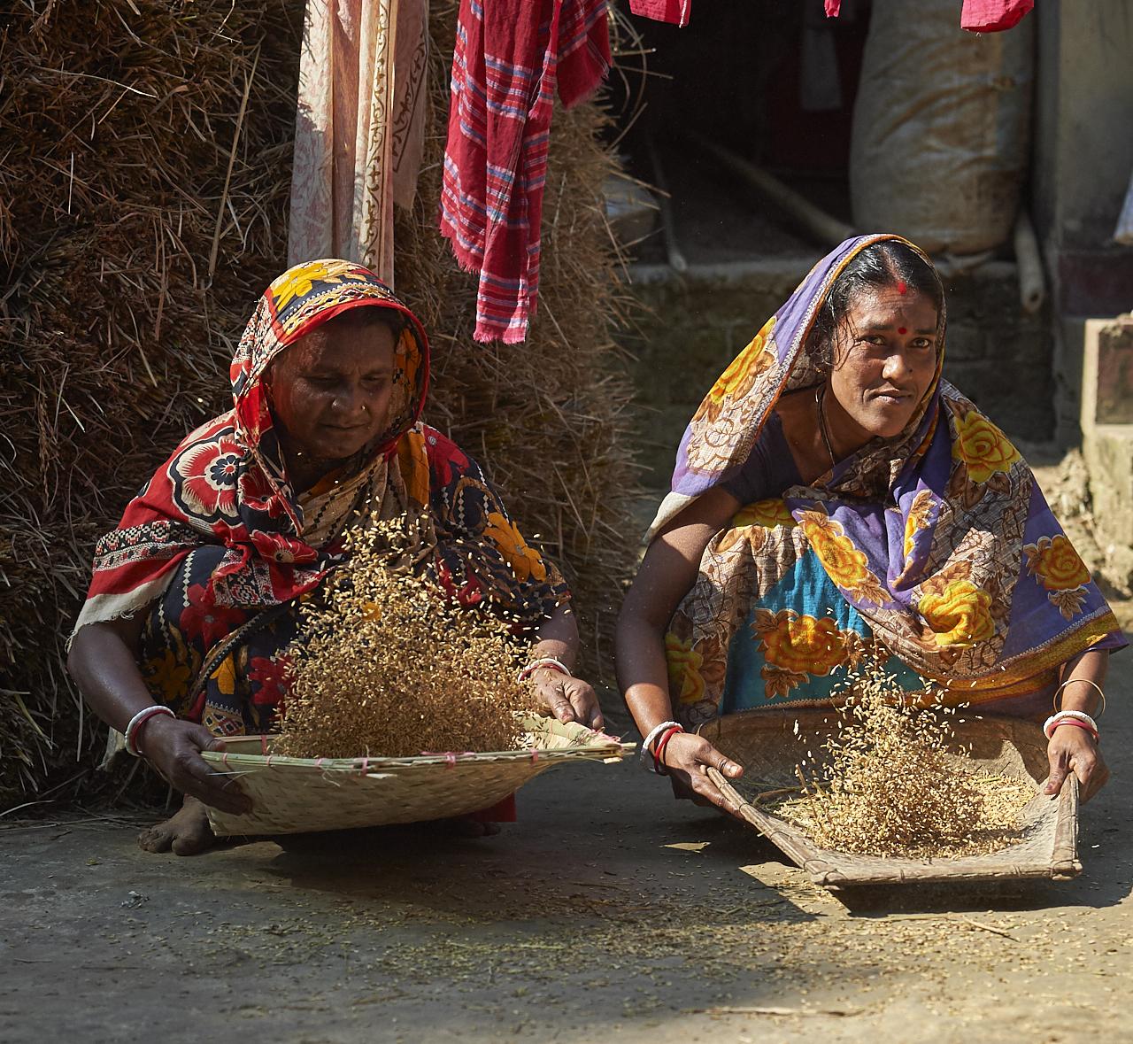 2019_Jan_01_Bangladesh_7538