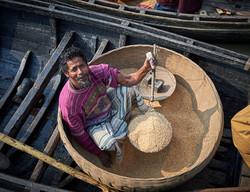Rice auction, Barisal
