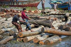2018_Dec_27_Bangladesh_8250
