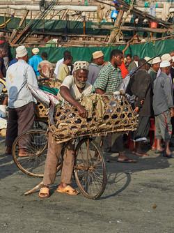 Old man transferring fish, Stonetown