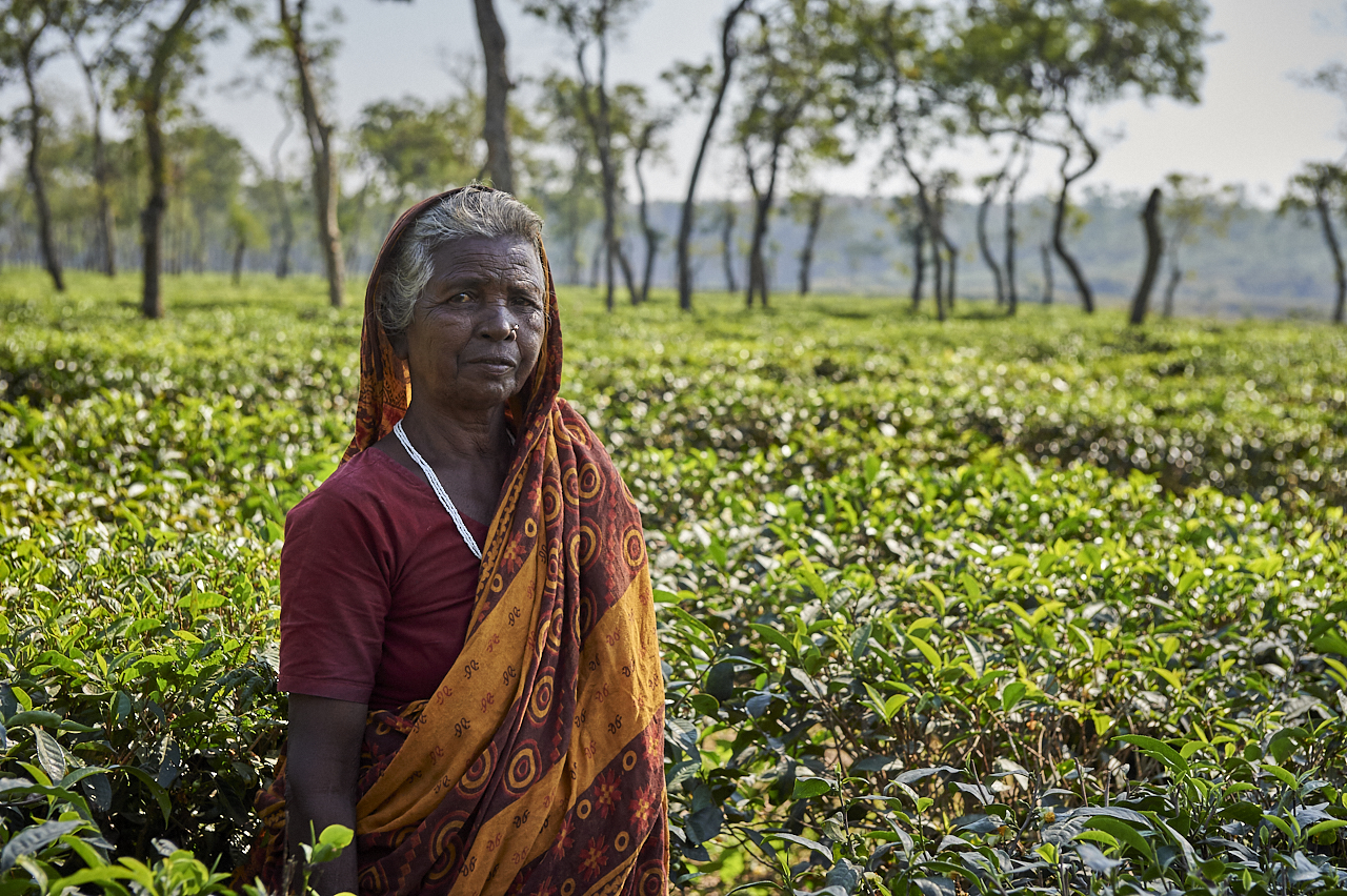 2018_Dec_30_Bangladesh_8676