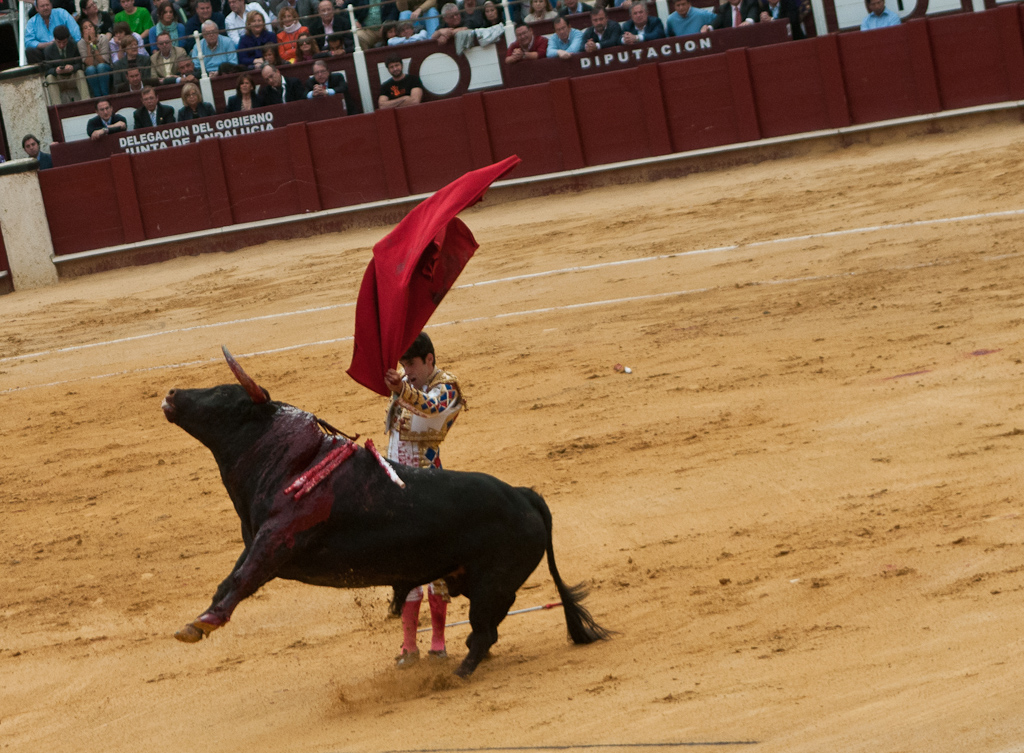 Bullfighting - Malaga, Spain