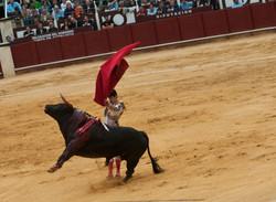 Bullfighting - Malaga, Spain