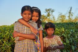 2018_Dec_30_Bangladesh_6901