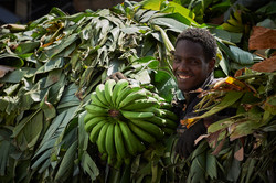 Banana worker, Addis Merkato