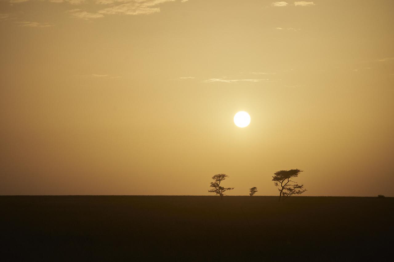 Sunrise, Serengeti