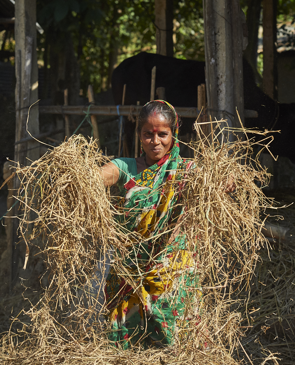 2019_Jan_01_Bangladesh_7513