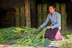 Flower market worker, Mandalay
