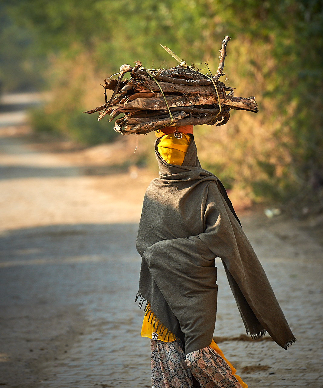 Head-carrying wood, Rajasthan