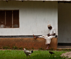 Old man at a spice farm