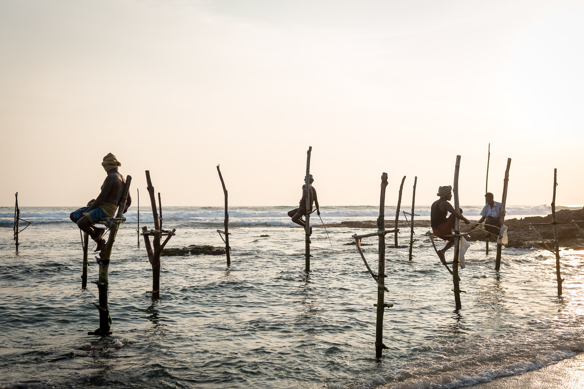 Stilt fishermen, Koggala beach