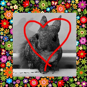 The Lunatic Squirrel