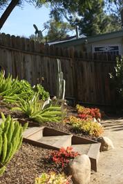 Back Garden Transition