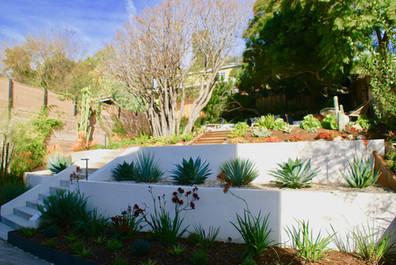 Back Garden Overview