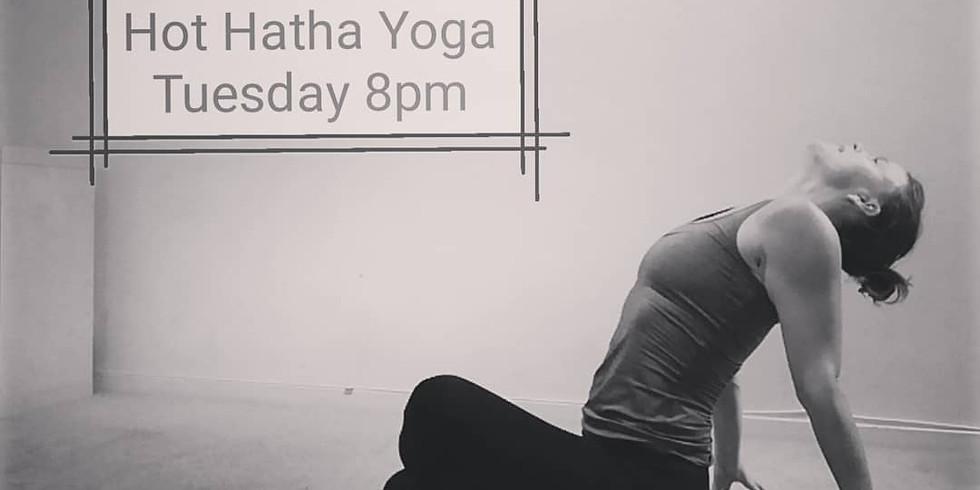 Hot Hatha Yoga practice